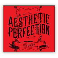 Aesthetic Perfection - Inhuman Ltd Ed EU CD Maxi Single