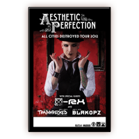Aesthetic Perfection 2012 US Tour 11x17 Poster